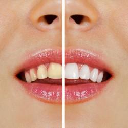 odontologia03